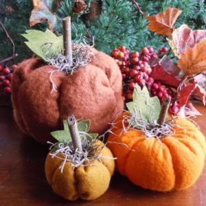 PumpkinsBatch 1 005