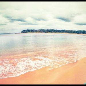 jibbon beach royal national park