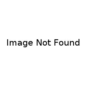 4D Cookies
