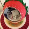 GJ Cakeware
