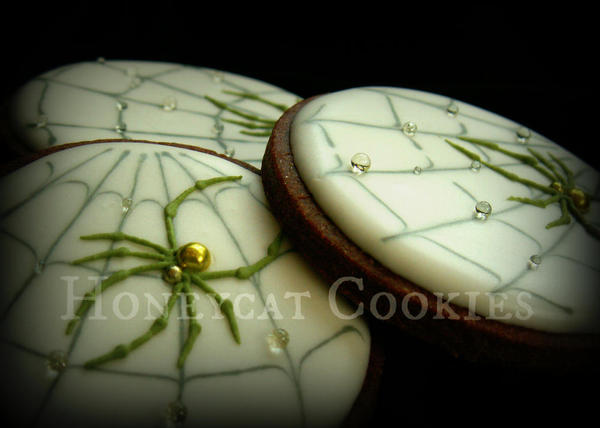 Spiders - Lucy at Honeycat Cookies - 9
