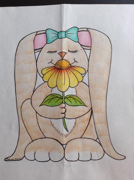 Dana's Drawing