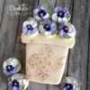Ivory Pot with Pansies: Cookies and Photo by Melissa O'Regan