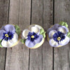 Pansies, Up Close: Cookies and Photo by Melissa O'Regan