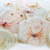 Finished Spider Cookies!: Cookies and Photo by Honeycat Cookies