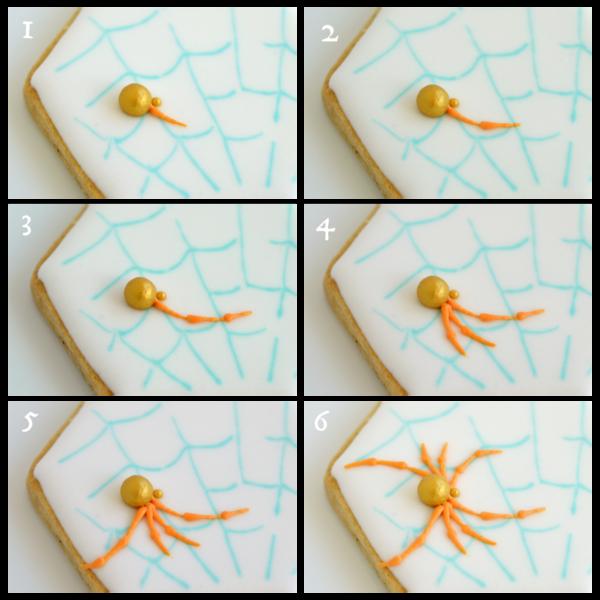 spider Collage1