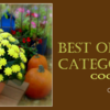 Saturday Spotlight - Best of Category Cookies