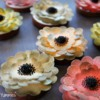 Wafer Paper Flowers - Final Set: Cookies and Photo by Yankee Girl Yummies