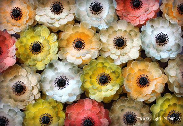 Wafer Paper Flower Set Pic