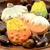 Bowl of Gourds: Cookies and Photo by Honeycat Cookies