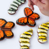 Simple Butterfly and Caterpillar Cookies: Cookies and Photos by Lisa Snyder