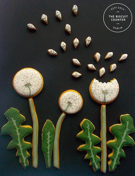 dandelion wish close-up