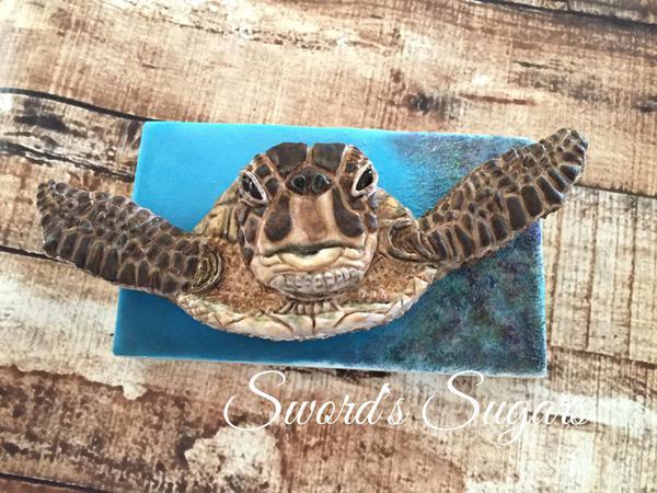 #6 - Sea Turtle by Delorse