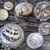 Halloween Pocket Watch Collage: Cookies and Photo by Dany Lind of Dany's Cakes
