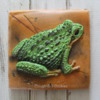 Frog Cookie: Cookie and Photo by Amy Clough of Clough'D 9 Cookies