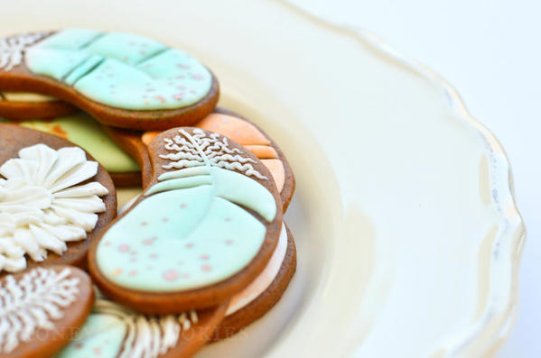 Close Up of Feather Cookies