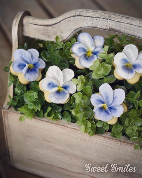#4 - Pretty Pansies by Sweet Smiles