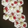 Ranunculus Puzzle: Cookies and Photo by Laegwen