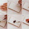 Steps 7 to 12: Cookies and Photos by Dolce Sentire