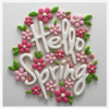 #2 - Hello Spring!: By Manu
