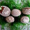 Jajka Wielkanocne: By Teresa Pękul