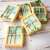 Windows: Cookies and Photo by hikainmel (vert)