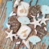 Summer Cookies: Cookies and Photo by Atelier Detour