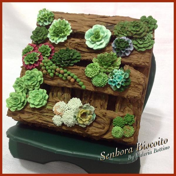 #8 - Succulent Garden by Valeria Bottino