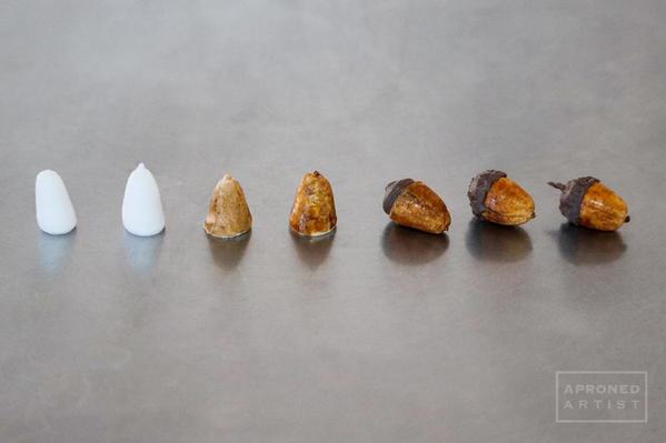 acorn steps