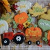 #9 - Pumpkin Hay Ride: By The Tailored Cookie