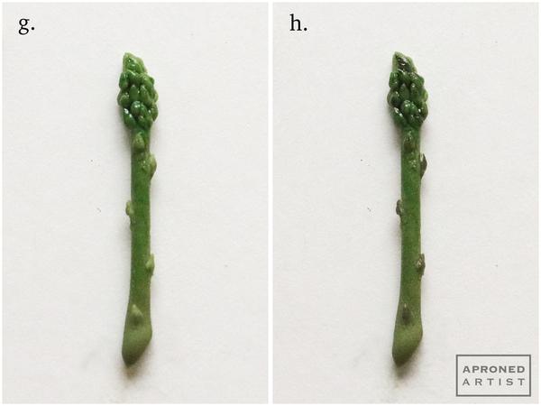 asparagus g:h