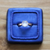 Wedding Ring Cookie - Where We're Headed!: Cookie and Photo by Aproned Artist
