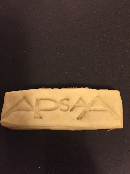APsaA logo