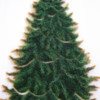 Step 2d - Pipe Pine Needles on All Tree Sections: Cookies and Photo by Aproned Artist