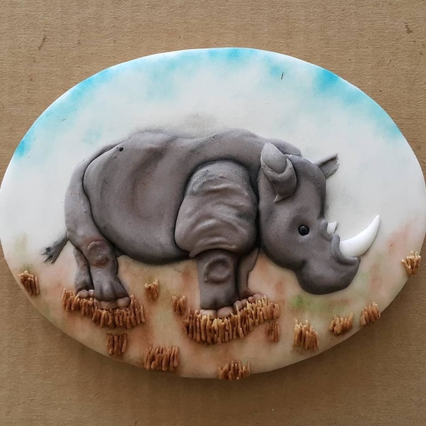 #9 - Rhino by Liesbet