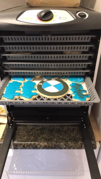cabela dehdryator to dry royal icing