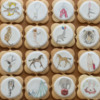 June 2019 Site Background: Cookies and Photo by Barbara Smith