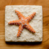 Sea Star Beach Cookie - Where We're Headed!: Cookie and Photo by Aproned Artist