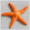 Step 2a - Poke Holes in Sea Star Royal IcingTransfer: Photos by Aproned Artist