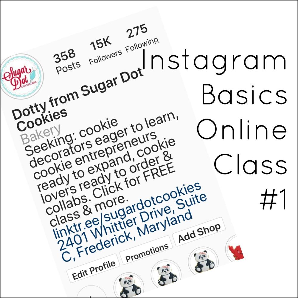 Instagram Basics - Live Online Class