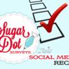 Sugar Dot Surveys - Social Media Recap Banner: Logo Courtesy of Sugar Dot Cookies; Graphic Design by Julia M Usher