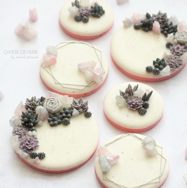 #2 - Succulents and Crystals by mintlemonade (cookie crumbs)