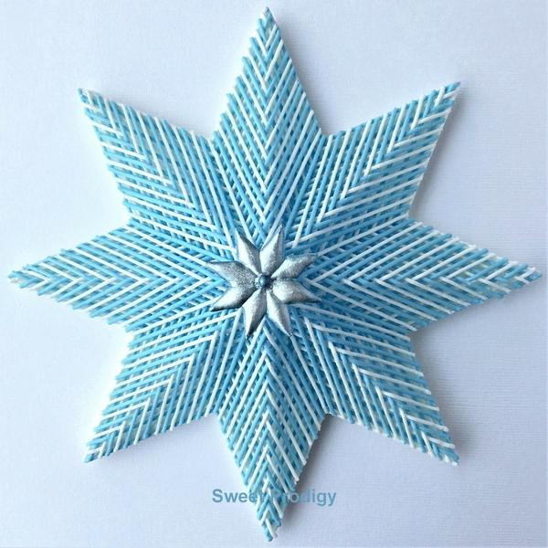Winter Poinsettia - Sweet Prodigy