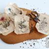 #8 - Herbarium: By PUDING FARM