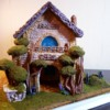 Gingerbread House: Gingerbread House and Photo by Sofiya