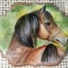 #5 - Horse Portrait: By Ewa Kiszowara MOJE PIERNIKI