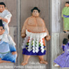 Sumo Wrestling: Photos and Cookies by Ryoko ~Cookie Ave.