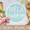 April 2021 Site Banner: Cookies and Photo by Elke Hoelzle; Graphic Design by Pretty Sweet Designs and Icingsugarkeks