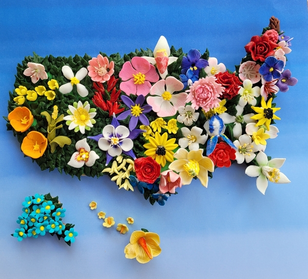 #1 - United Flowers of America by Zeena