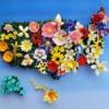 #1 - United Flowers of America: By Zeena